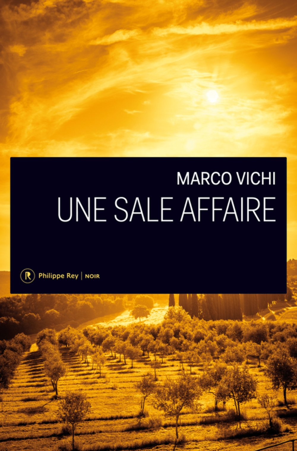 Couverture Une Sale affaire